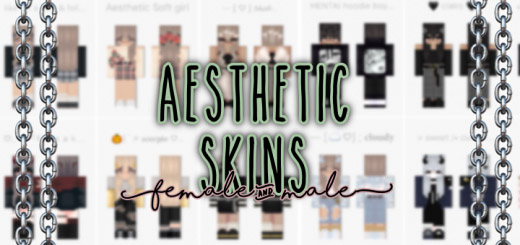 Aesthetic Skin Pack