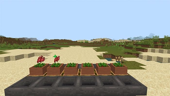 botany-pots-v2.3