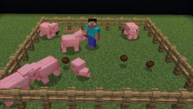 Bedrock-Animal-Farming-Expansion-Vanilla-Friendly.jpg