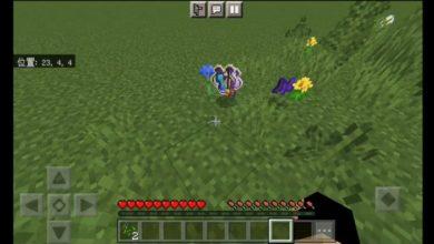 Bedrock-Minecraft-But-Grass-Drop-OP-Loots.jpg