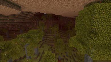 Bedrock-Nether-To-OverWorld-ALPHA-Full-Version-13.jpg