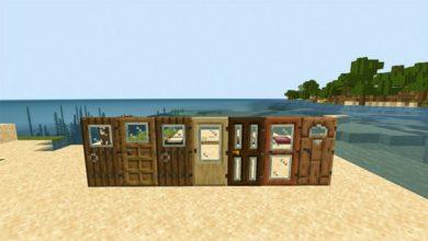 windowed-doors-and-trapdoors